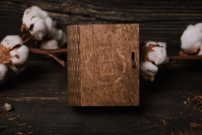 wood usb stick